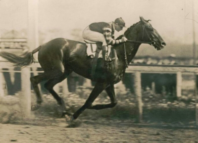 Man O' War, The Champion of All Champions