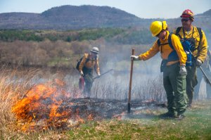Prescribed Fires Planned at Saratoga National Historical Park