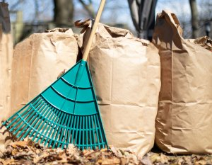 City: Curbside Leaf and Lawn Debris Pick Up