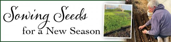Sowing Seeds for a New Season